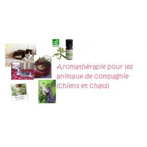 Aromathérapie des animaux de compagnie